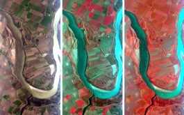 immagine multispettrale RGB e NIR Mivis